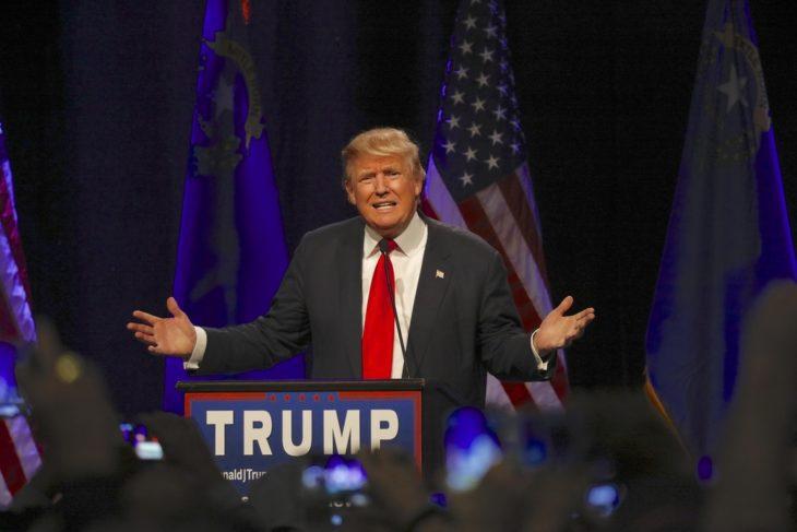 Donald Trump Prop Bets Released For Evander Holyfield-Vitor Belfort Fight